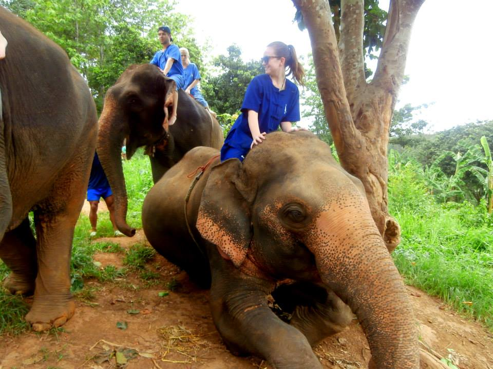 baanchang-elephant-park (1)