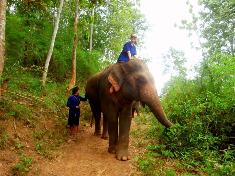 baanchang-elephant-park (9).jpg