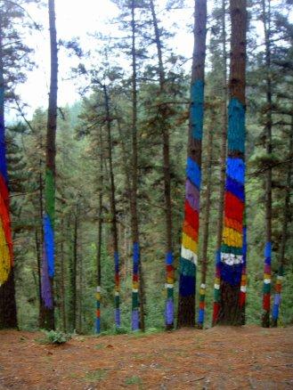 bilbao-bosque-de-oma